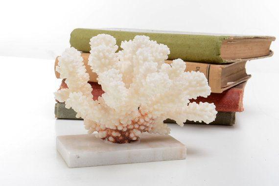 Pieza de coral marino antiguo con peana de mármol por Brocantebcn #brain coral #white coral #coral fossil #sea coral #coral decoration # coral specimen #coral with base
