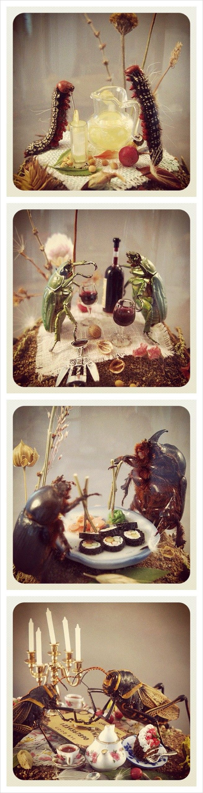 Insect Dioramas by Lisa Wood (Too funny!! The two grasshoppers playing with a Ouijia board and enjoying tea and cake is my favorite.)
