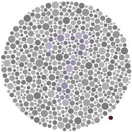 If you can't see the numeral 7, you may have blue-yellow color blindness.by testingcolorvision.com via wsj #Color_Vision_Test