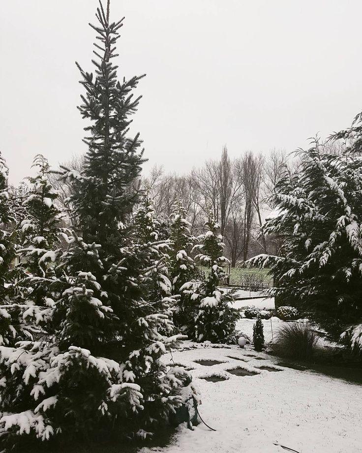 W O N D E R L A N D  #christmas #comingsoon #snow #winterwonderland . . . #selfie #ootd #outfit #happy #motd #lips #fit #fitness #rainy #carselfie #goodlife #brunette #girl #bielefeld #köln #newyork #düsseldorf #hannover #paderborn #london #berlin #hamburg #münchen #stuttgart #potd