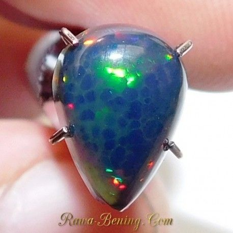 Batu Mulia Natural Pear Cab Black Opal 1.10 Carat