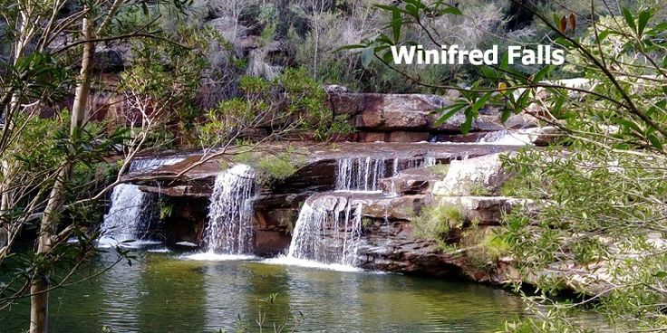 Trail to Winifred falls cover at Royal National Park, Sydney