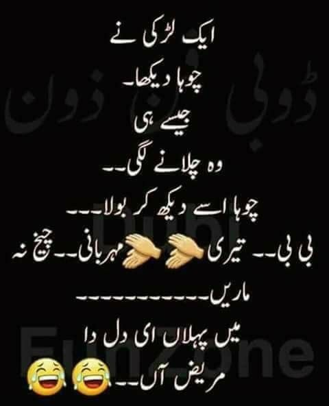 Funny Poetry Quotes In Urdu: 73 Best JOKES (PATHAN) Images On Pinterest