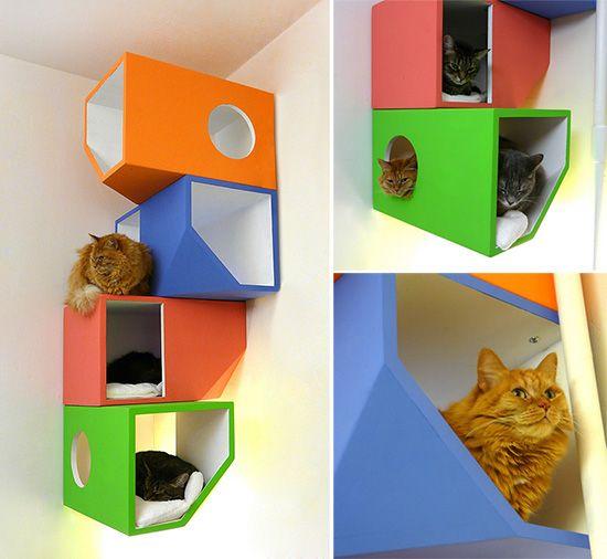 Catissa Floating Modular Cat House Part 79