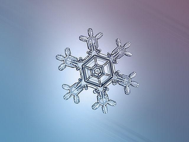雪の結晶(14)