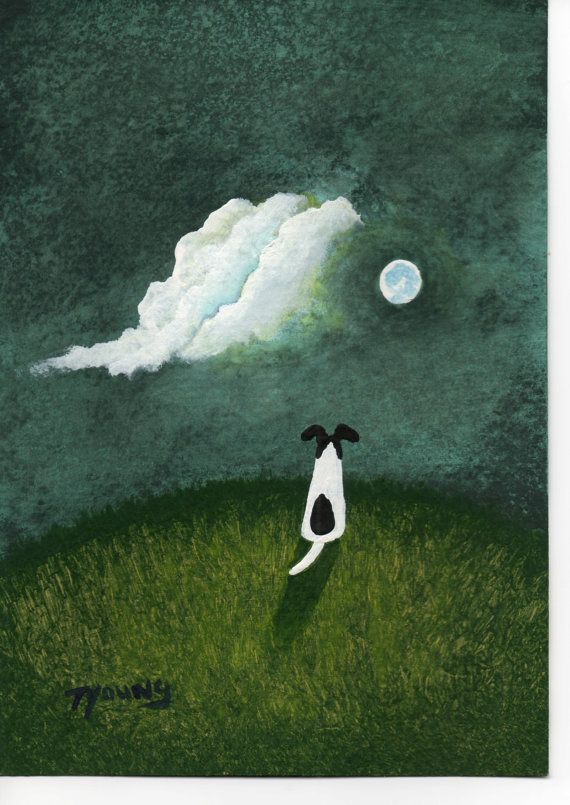 Smooth Fox Terrier Dog by Todd Young