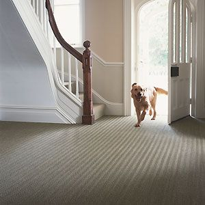 Seagrass Hallway Carpet Best Hallway Carpets Hallway Decorating Ideas