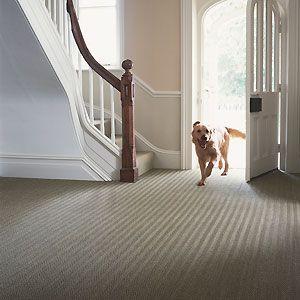 Seagrass hallway carpet best hallway carpets hallway for Hall stairs carpet ideas