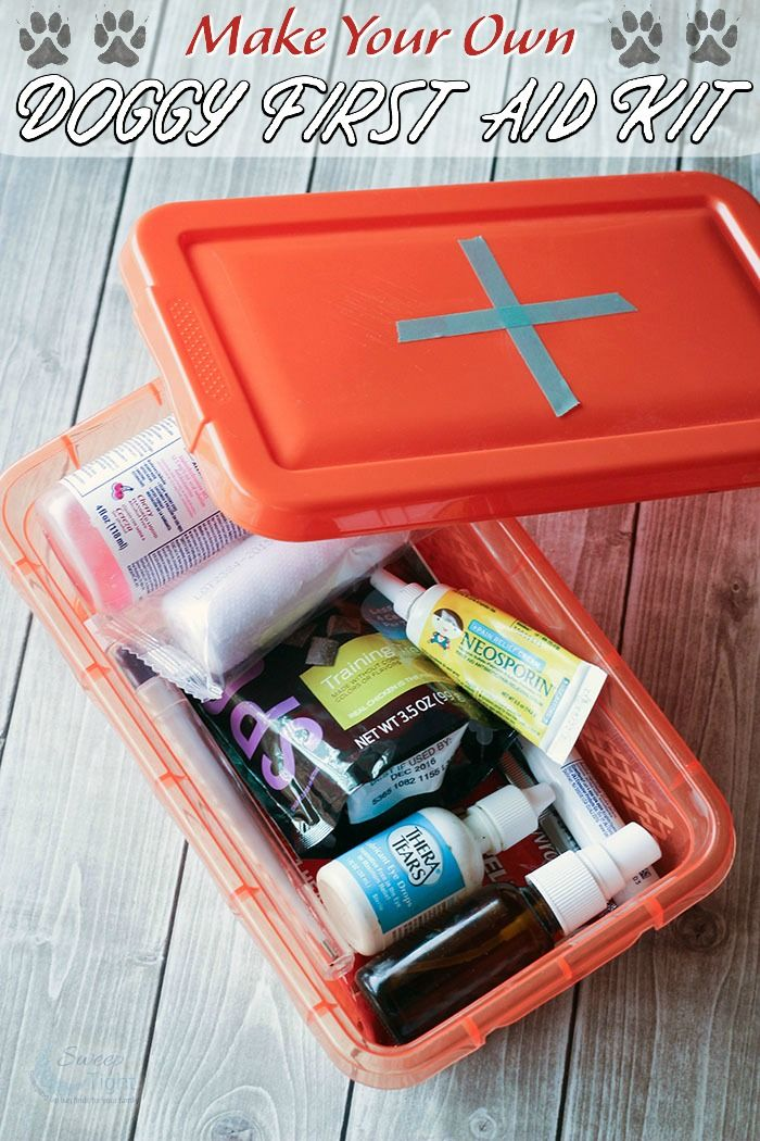 Dog first aid kits are great to have on hand. Having more than one is especially helpful when you are traveling, hiking, or anywhere away from home. This DI