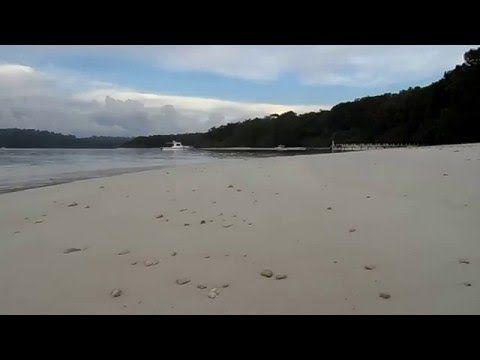 Peucang Island - Ujung Kulon - YouTube