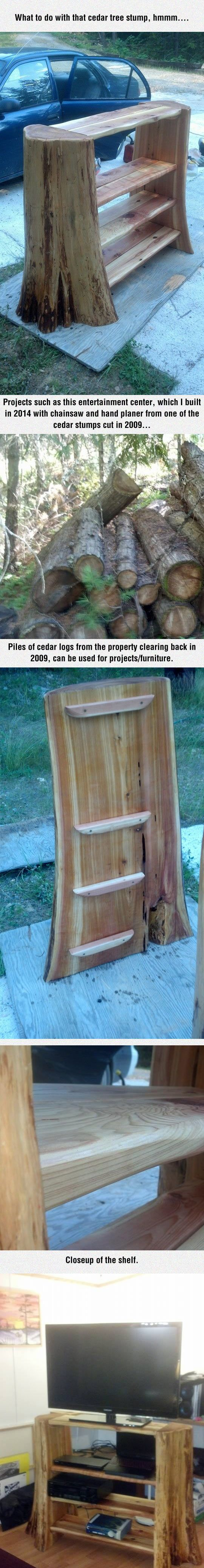 Cedar stump entertainment center