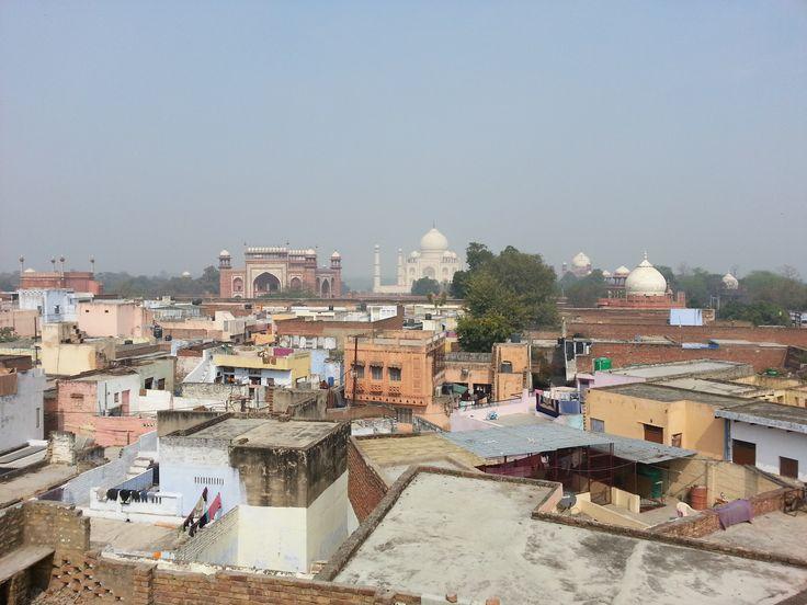 Taj from the roof terrace