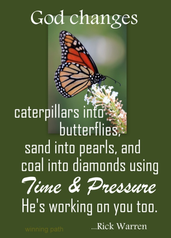 43 Best The Butterfly Effect Images On Pinterest