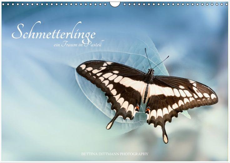 Kalender Schmetterlinge – ein Traum in Pastell  Ab sofort im Buchhandel erhältlich :-)