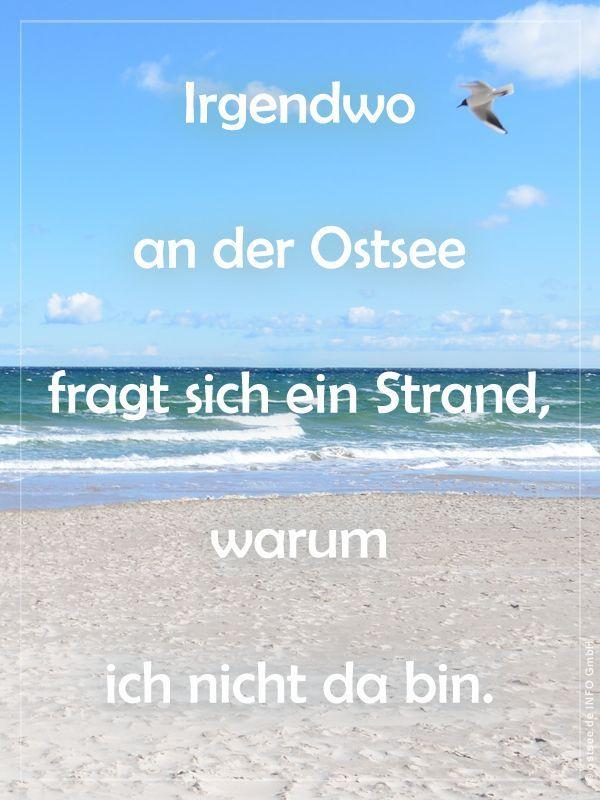 Der Strand Vermisst Mich Spruche Weisheiten Von Der Kuste Zitate Urlaub Spruche Weisheiten