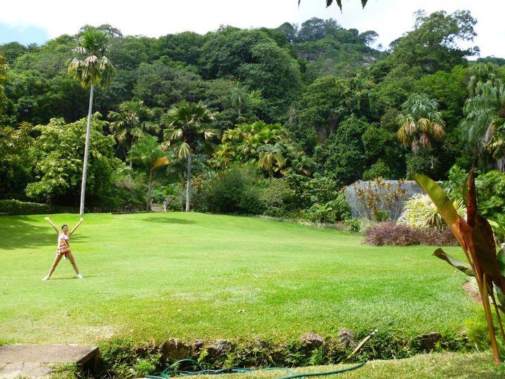 Seychelles has it all ! The most impressive Botanical Garden i've ever seen