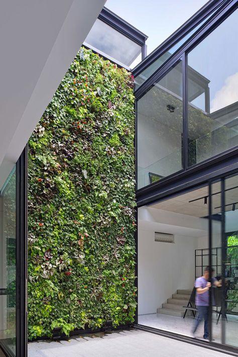 Janela alta com vista para parede verde
