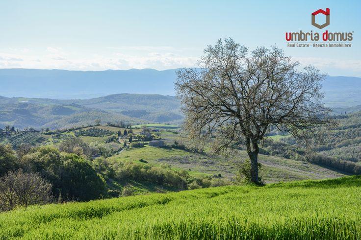 Primavera.. Vieni a conoscere l'Umbria
