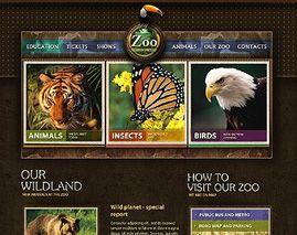 zoo niche web site design