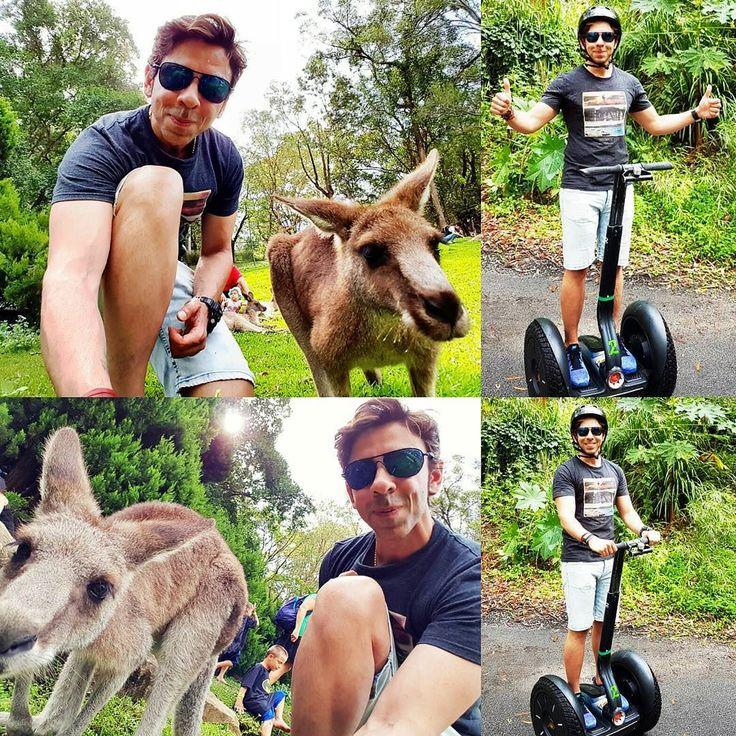 #kelfie#selfiewithkangaroo#selfie #wildlife#currumbinwildlifesanctuary#currumbin#oz#aussie#downunder#australia#treetop#treetopchallange#crocodile#kangaroo#natural#fun#segway#segways#segwaytour#safari#segwaysafari#safaripark#glide#bushland#rainforest#rainforests by amitdarien http://ift.tt/1X9mXhV