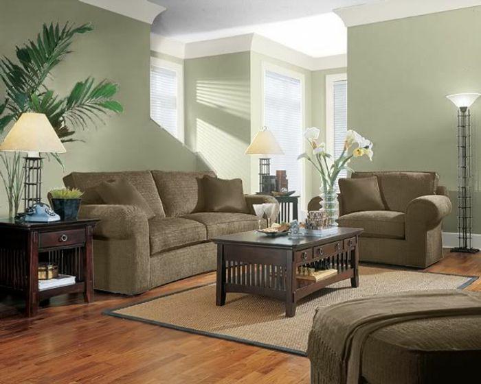 salon moderne murs en vert sauge canapés en brun   NUANCIER DE ...