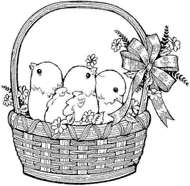 Cute Easter Chicks In Basket Easter Coloring Pages 613x599