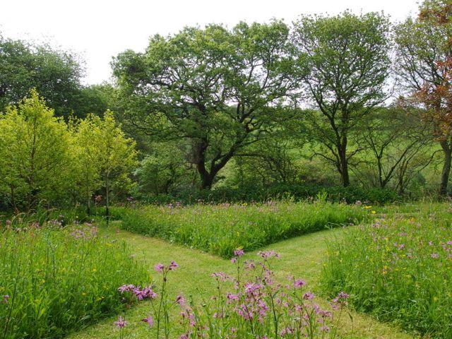 Spring meadow, Jo Penn  garden designer.