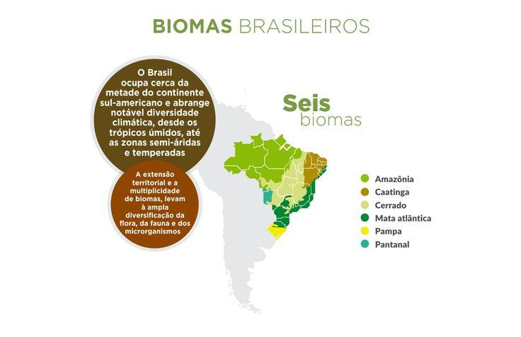 SiBBr - Biodiversidade Brasileira