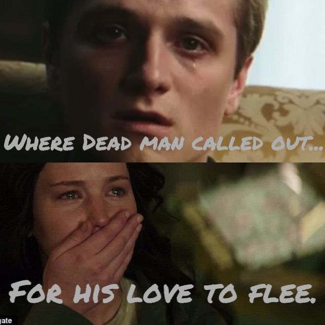 Josh & Jennifer Hutcherson as Peeta & Katniss MockingjayPt.1