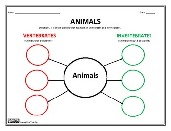 10 best vertebrates assignment images on pinterest animal classification teaching science. Black Bedroom Furniture Sets. Home Design Ideas