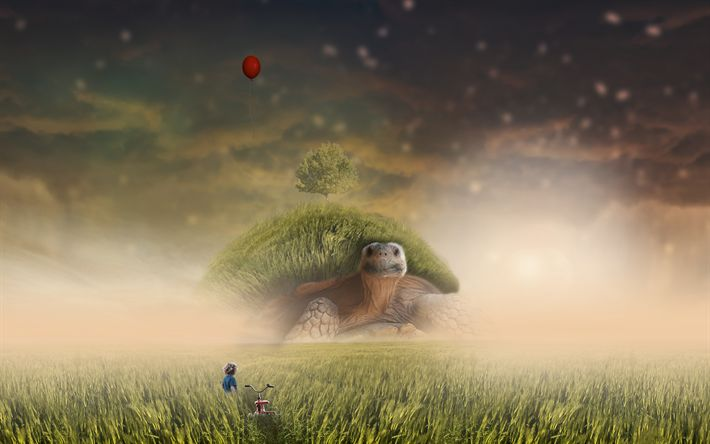 Download wallpapers turtle, 4k, field, meadow, air balloon, child