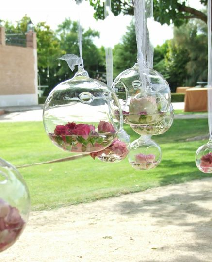Peceras con flores flotantes - TELVA