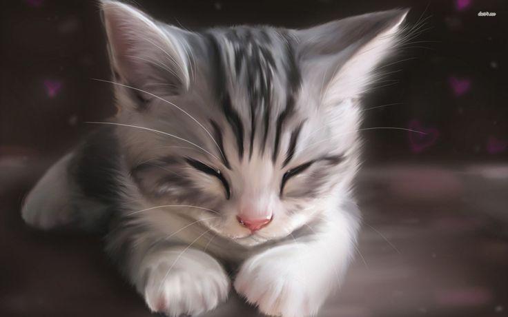 Sleepy kitten wallpaper Artistic wallpapers 12118