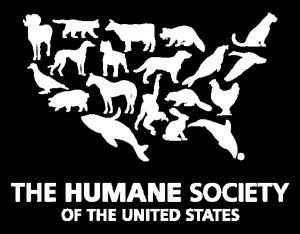 6 organizations that protect animal rights - Humane Society of the United States