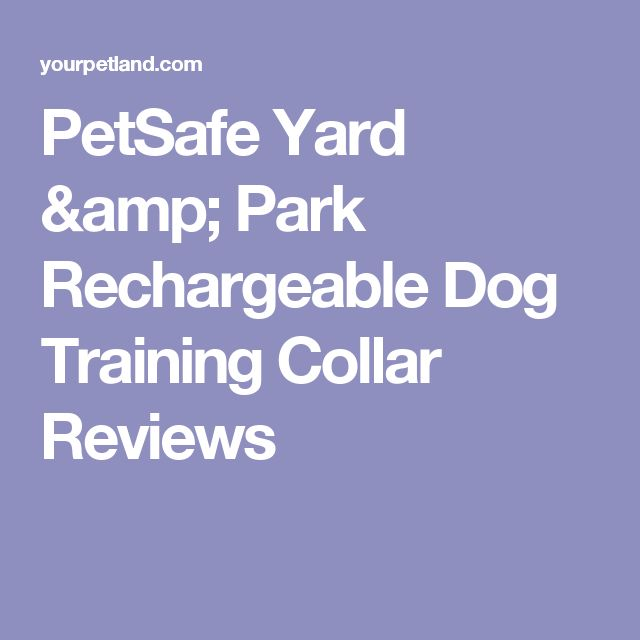 PetSafe Yard & Park Rechargeable Dog Training Collar Reviews