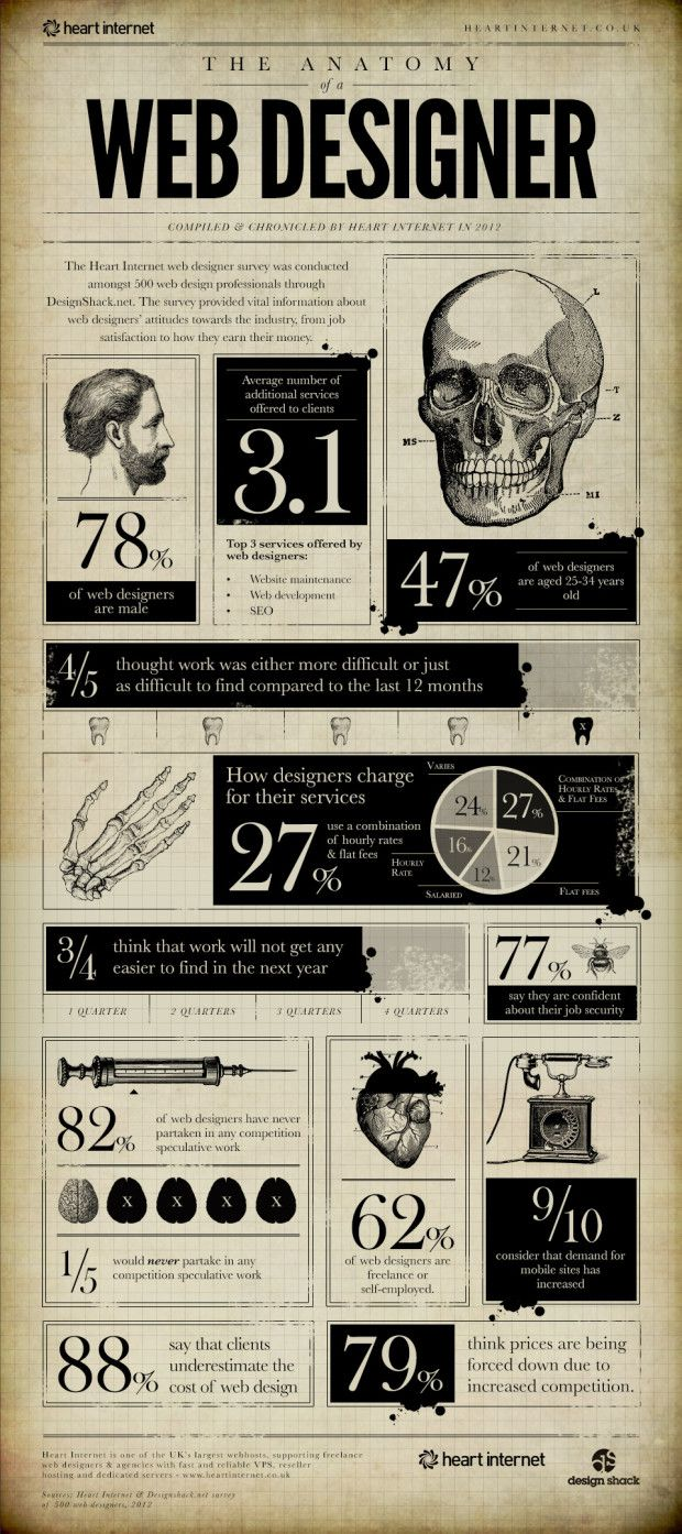 The anatomy of a web designer - infographic