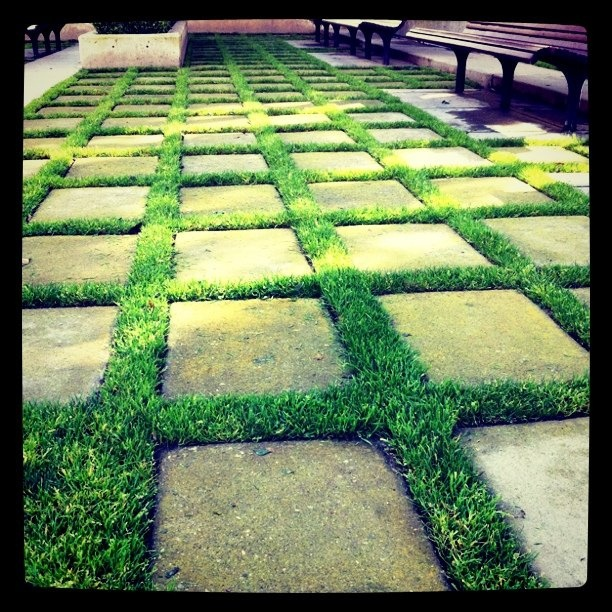 more paving stones and grass