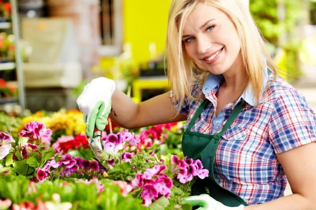 Rośliny ogrodowe, których nie musisz podlewać - poradnik dla leniwych #ogrod #rosliny #roslinyogrodowe