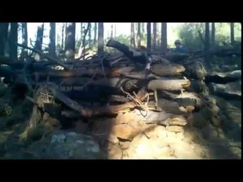 Arizona Campers Spooked By Rock Throwing Bigfoot [True Bigfoot Stories] - YouTube