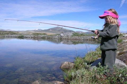 DAGENS PAPPATIPS: TA MED BARNA PÅ FISKETUR. 60 000 fulle fiskevann søker flere fiskere. Ta med deg barna på fisketur. Det er kvalitetstid, spenning og familiekos. (http://farogbarn.no/?p=3210)