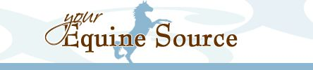 Your Equine Source specializes in bringing you a wide variety of Horses for Sale, Tack for Sale, Trailers for Sale, Trucks for Sale and more.