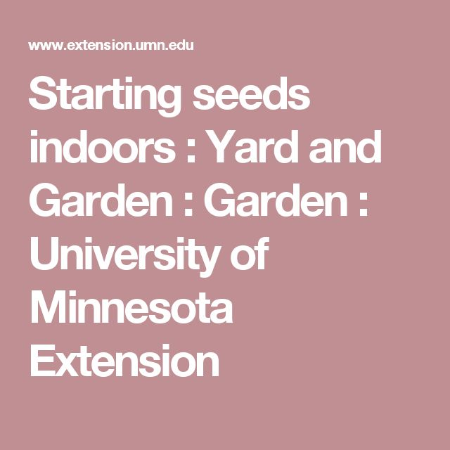 Starting seeds indoors : Yard and Garden : Garden : University of Minnesota Extension