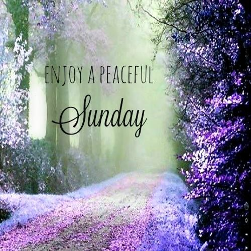 Happy Sunday! Enjoy your day of rest. Good day wishes