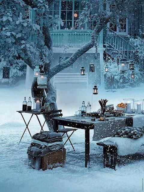 Vintrig utomhus-middag i egna trädgården.