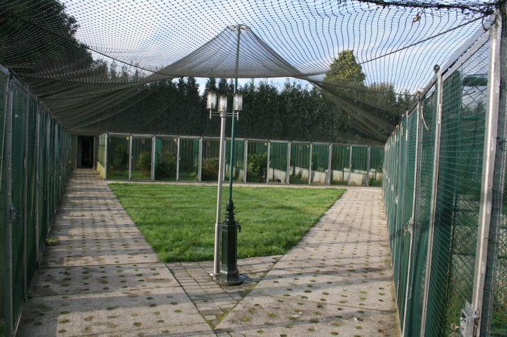 Tragopan Pheasantry — in Peer, Belgium.
