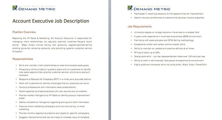 Technical Support Manager Job Description - A template to quickly - webmaster job description