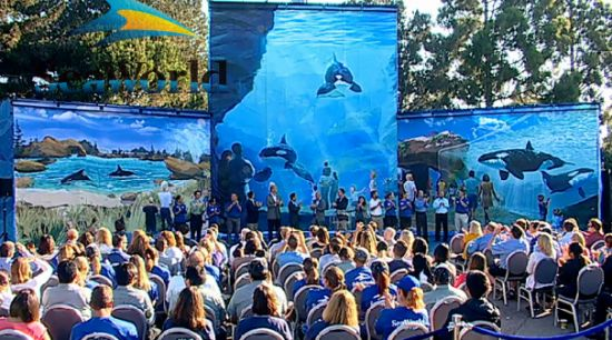 SeaWorld announces Blue World Project transforming and expanding theme park habitats for killer whales