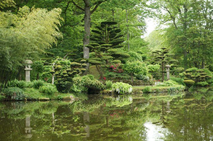 1000 id es sur le th me jardins tropicaux sur pinterest for Amenagement jardin oriental