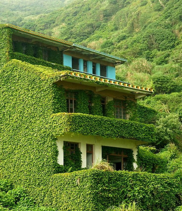 Green Ghost Town: Nature Overtakes An Abandoned Chinese