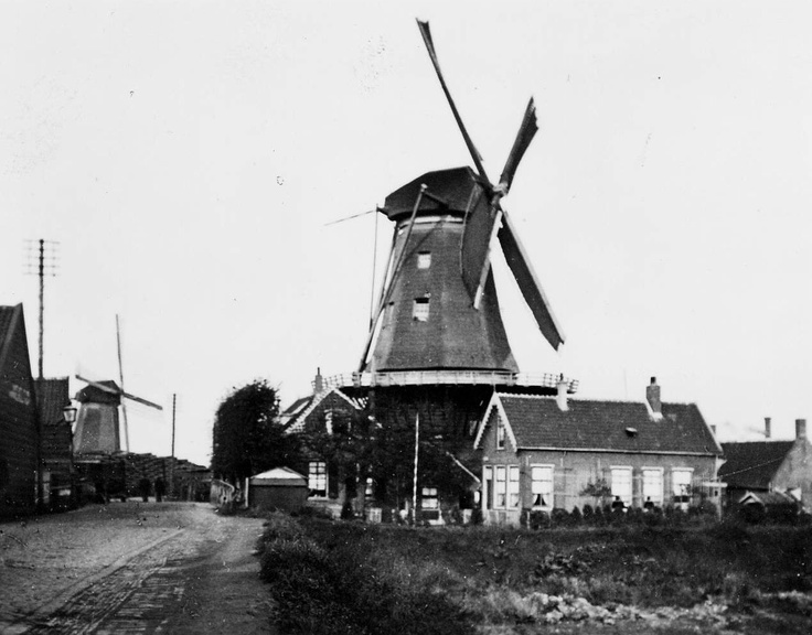"Windmills ""De Pelikaan"" and ""De Zeelt"" on 's Gravendeelsedijk, 1909"